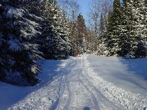 Snowmobile Trail 1