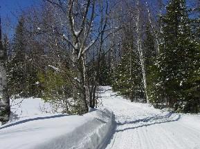 Snowmobile Trail 3